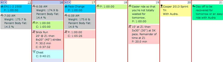 You can configure the color of strength activities in TP. Mine are blue.
